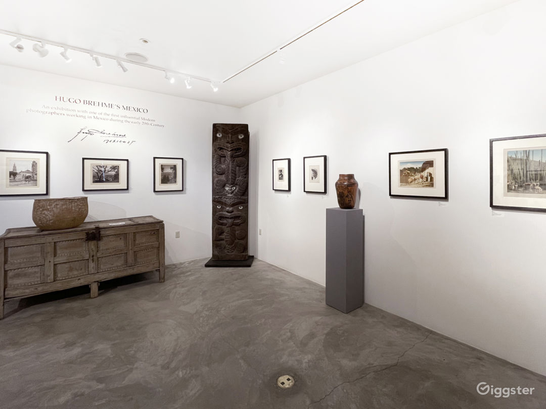Remodeled Spacious and Elegant Gallery Space Photo 1