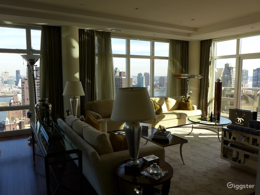 Penthouse With Spectacular NYC View  Photo 1