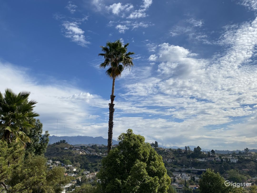 Northeast LA Writers Room/Office with views Photo 5