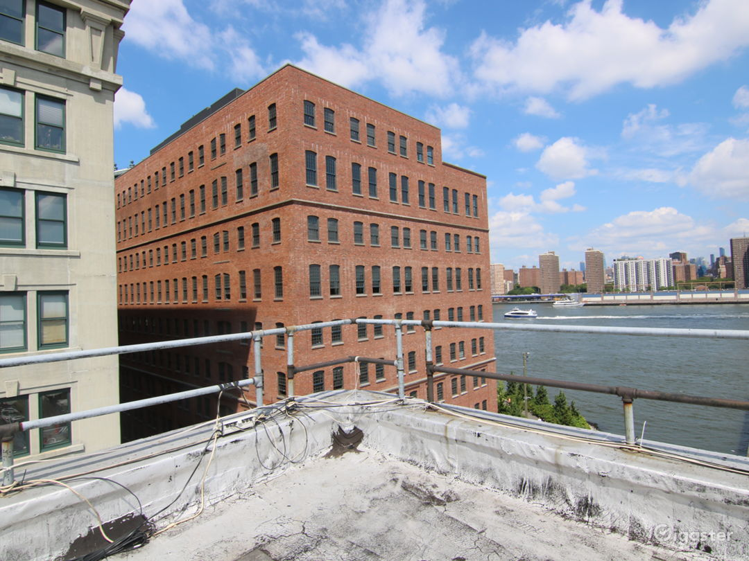 Dumbo Rooftop with Gorgeous Views  Photo 4