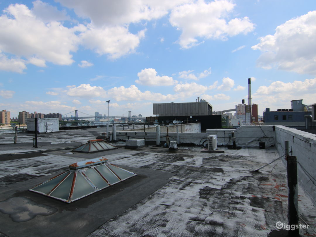 Dumbo Rooftop with Gorgeous Views  Photo 5