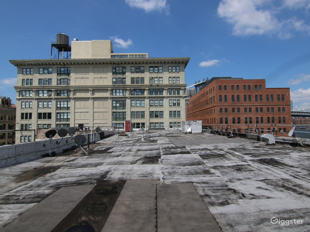 Dumbo Rooftop with Gorgeous Views  Photo 1