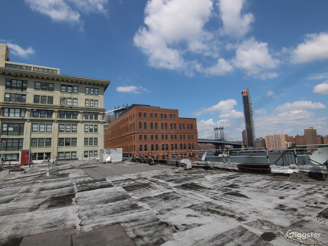 Dumbo Rooftop with Gorgeous Views  Photo 3