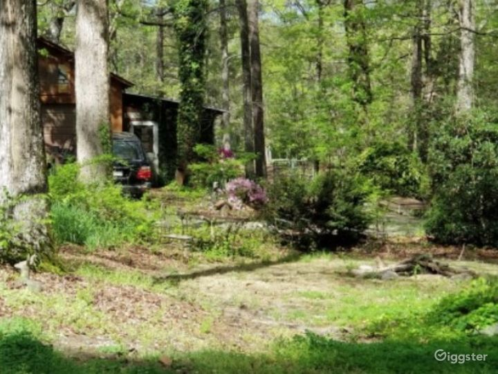 Rustic Style Home on Wooded Acres Photo 3