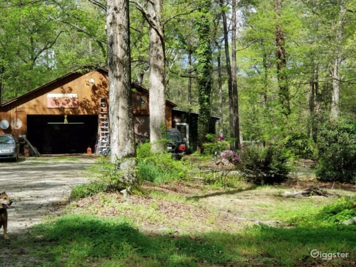Rustic Style Home on Wooded Acres Photo 4