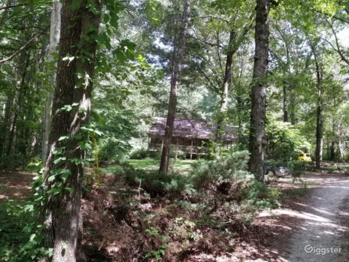 Rustic Style Home on Wooded Acres Photo 5
