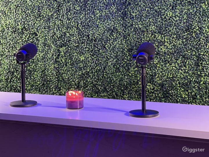 Our Grass Wall :  Backgrounds sets the mood for talks shows and a more intimate setting. We have various ways to help clients set the mood in each room.