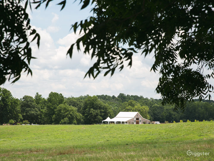Private Newnan Ranch with Multiple Looks Photo 3