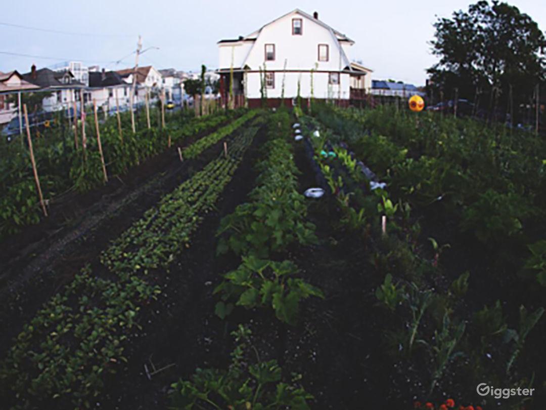 Urban Farm Photo 2