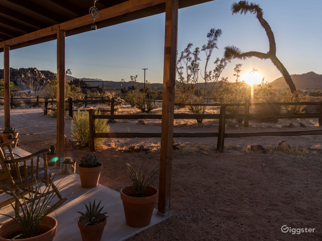 Rustic Modern Joshua Tree Desert Cabin Photo 4
