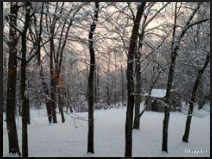 Snowy outdoor in Winters