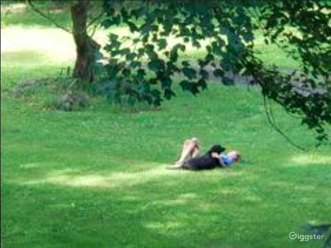 Grassy outdoor in summers