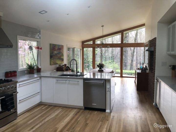 Mid Century Modern Home Photo 4