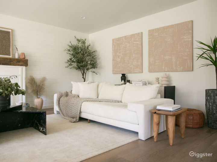 Bright Airy + Contemporary Open Floor Plan Home Photo 3
