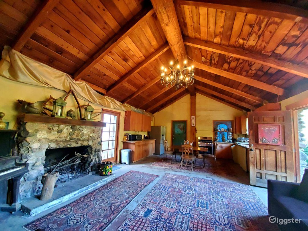 100yr + Stone House w/fireplace + French Quarters! Photo 1