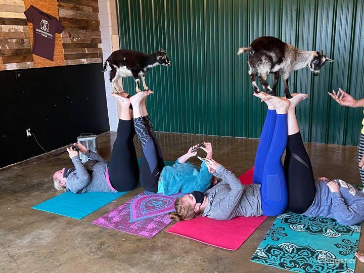 Unique Yoga Studio in Madison Photo 4
