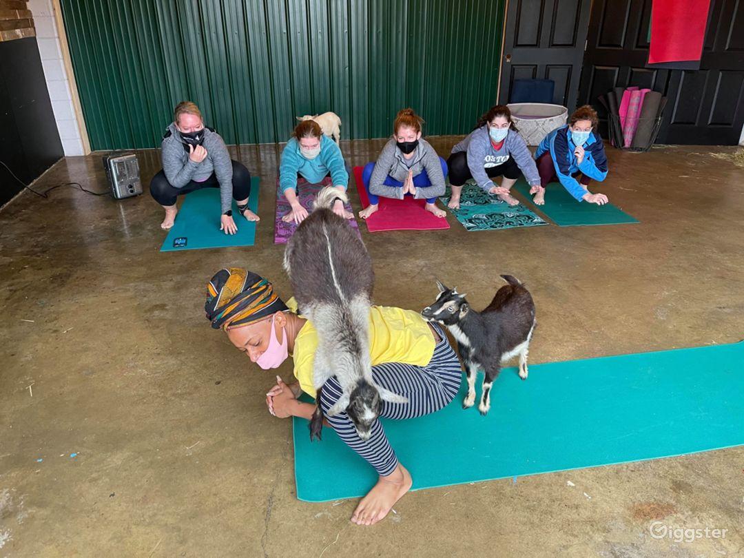 Unique Yoga Studio in Madison Photo 1