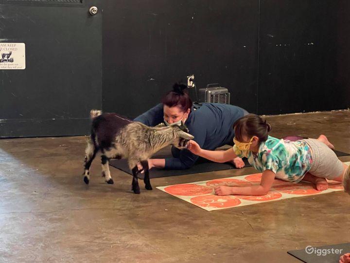 Unique Yoga Studio in Madison Photo 3