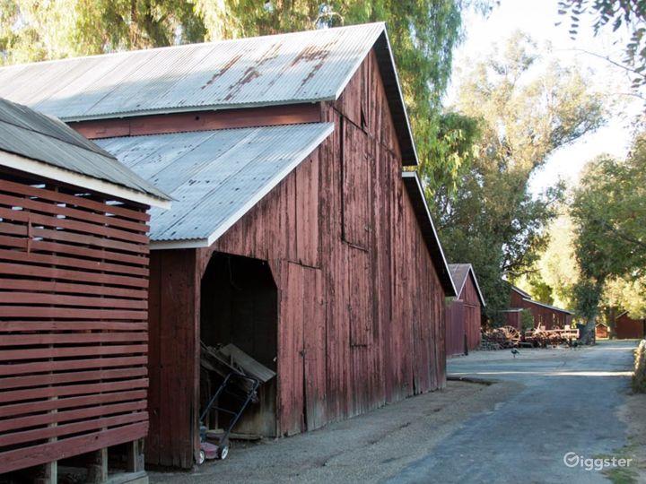 Barns w/Green Lawns, Cornfield & 6 Acre Farm Photo 2