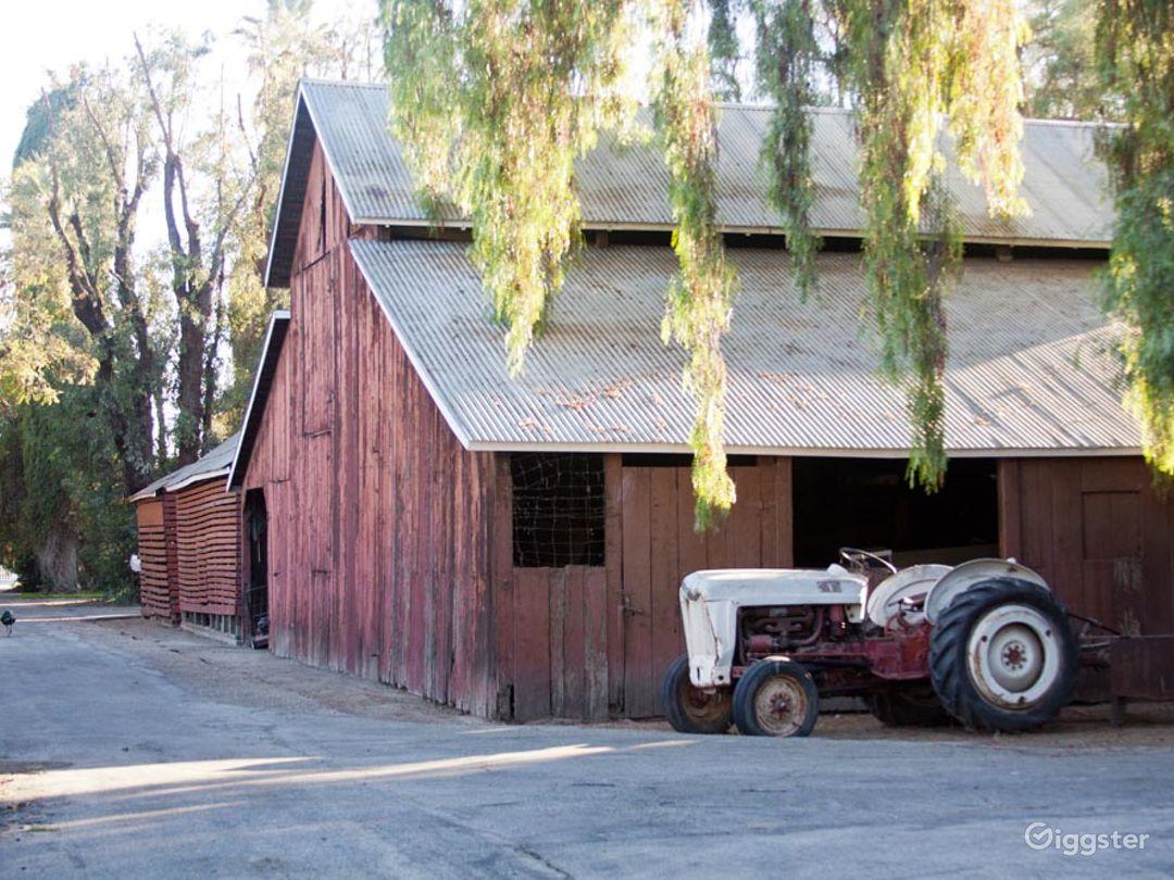 Barns w/Green Lawns, Cornfield & 6 Acre Farm Photo 1