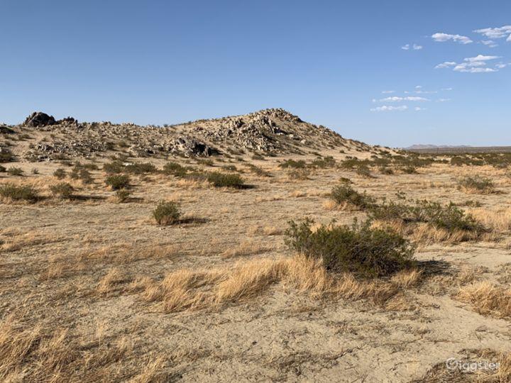 Open Acre Ranch W/ Desert Saloon Photo 5