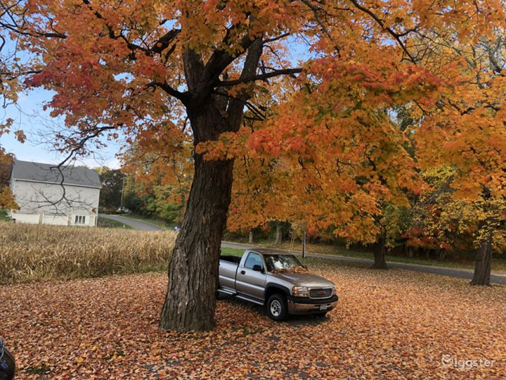 Beautiful fall foliage with the barn in the background