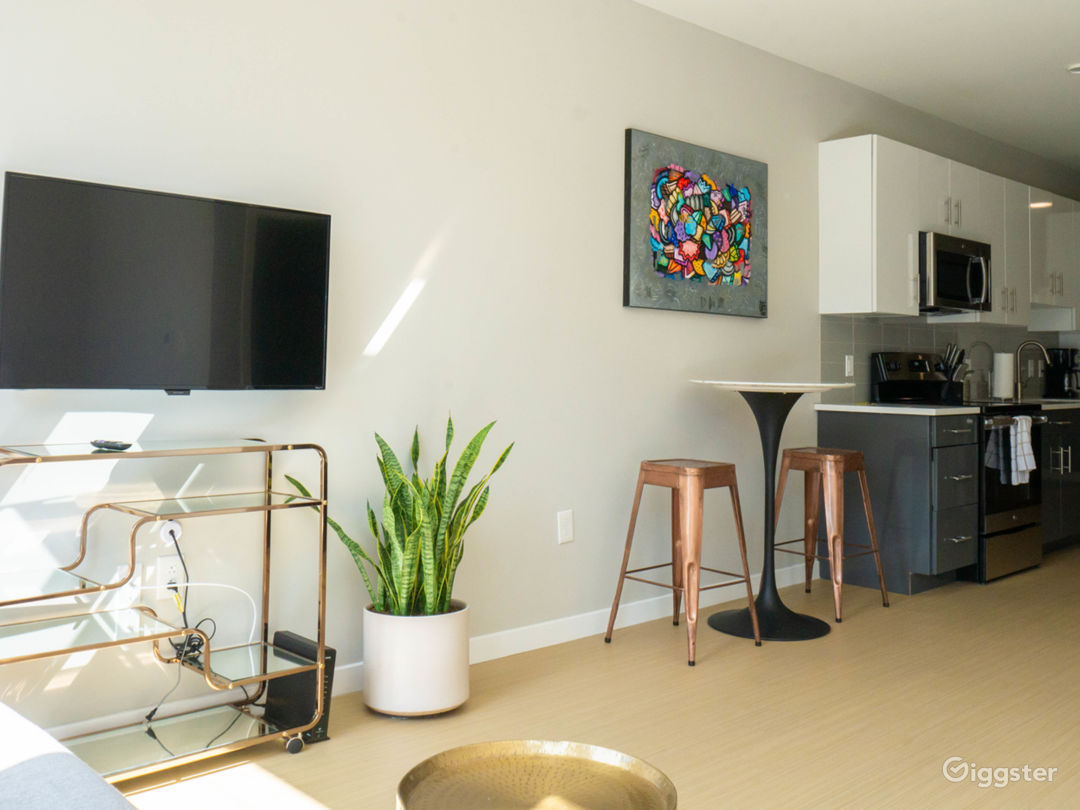 Modern Studio Suite in Old City PA Photo 3
