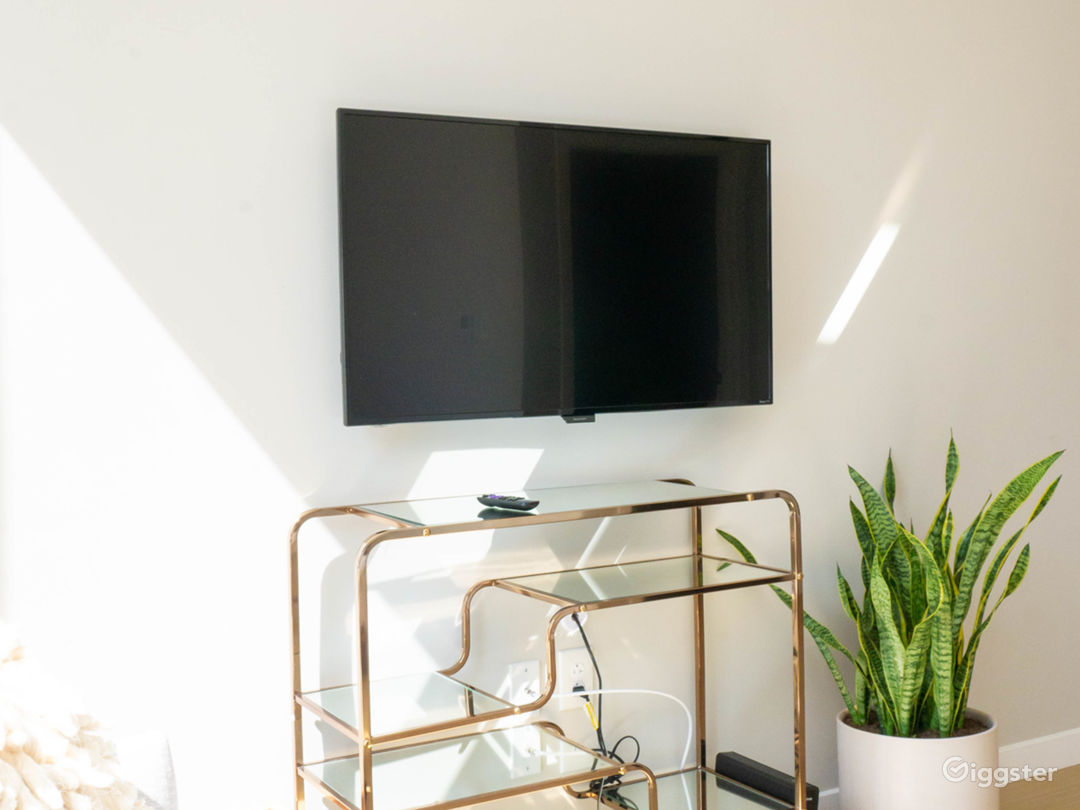 Modern Studio Suite in Old City PA Photo 4