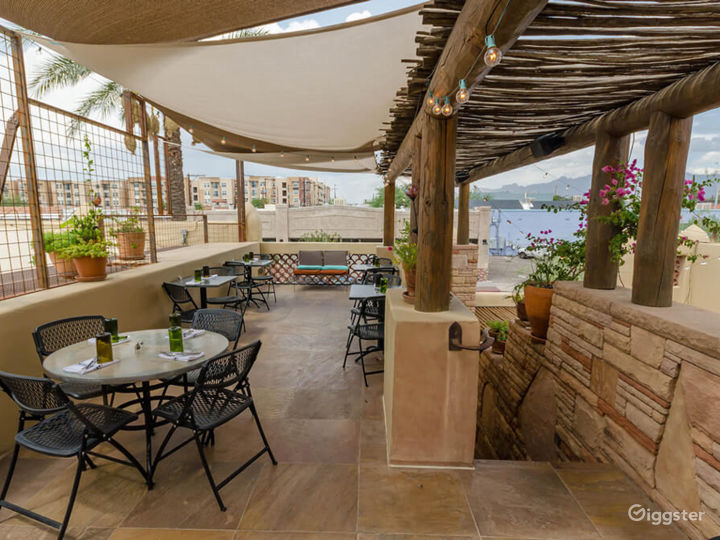 Courtyard and Patio with a Spectacular View of Catalina Mountains Photo 4