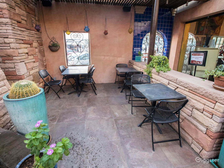 Courtyard and Patio with a Spectacular View of Catalina Mountains Photo 2