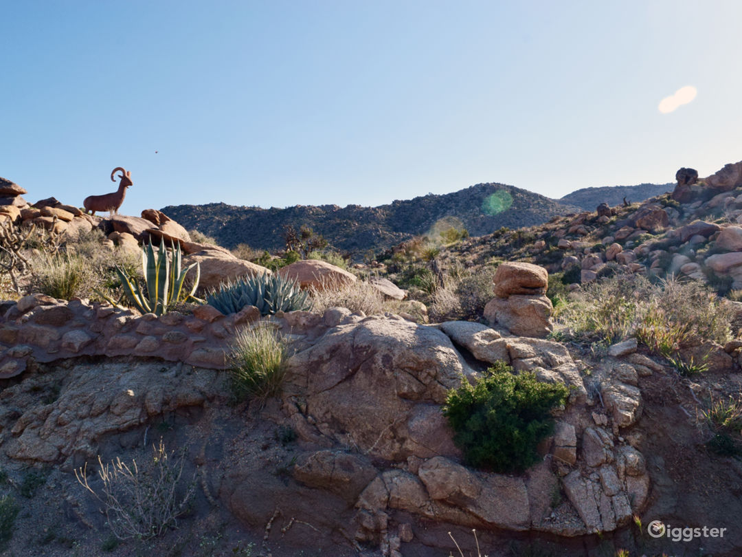 Big Horn Sheep sculpture imbedded in landscape in middle of property near home.