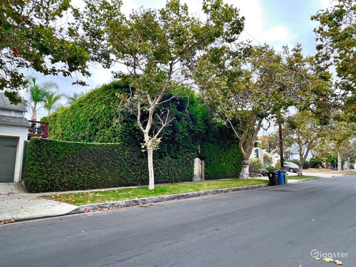 Hedged Home w/ Neutral Backdrops and Natural light Photo 2