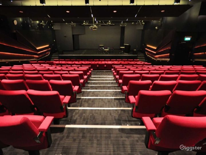 Well-equipped Weston Theater inside the Museum in London Photo 2