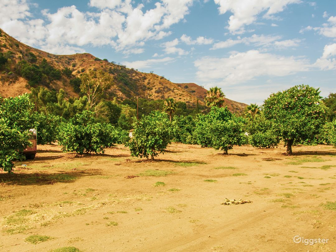 Orchard & Ranch Location Photo 3