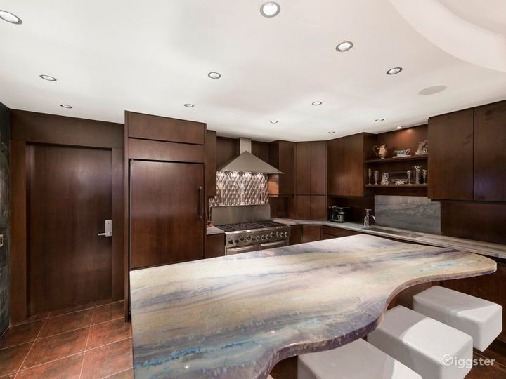 Upscale NYC townhouse: Location 5105 Photo 4