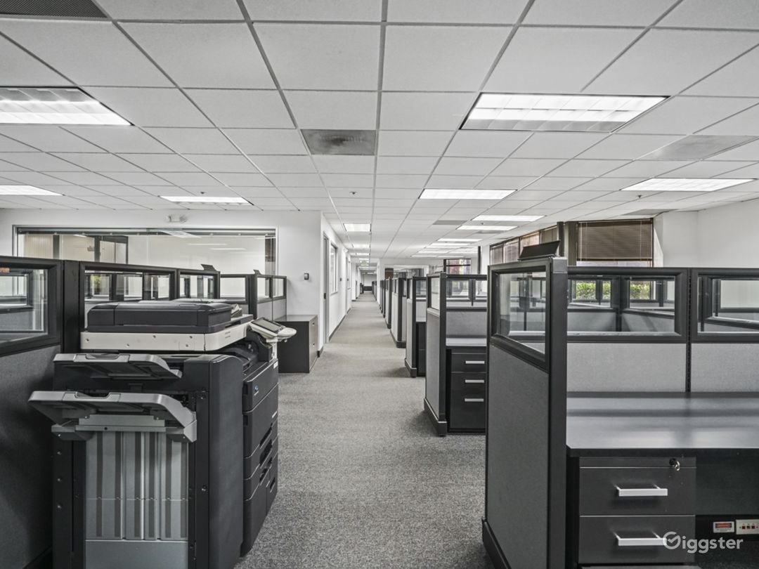 Corporate office space with cubicles, rooms, kitchen, elevators, roof and conference room.