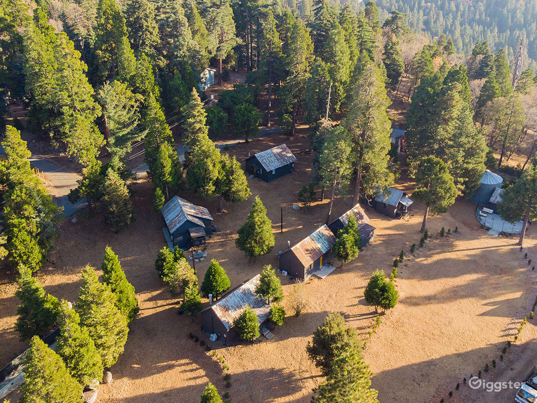 4+ acres with barn, silo,  cabins, forested and open areas.