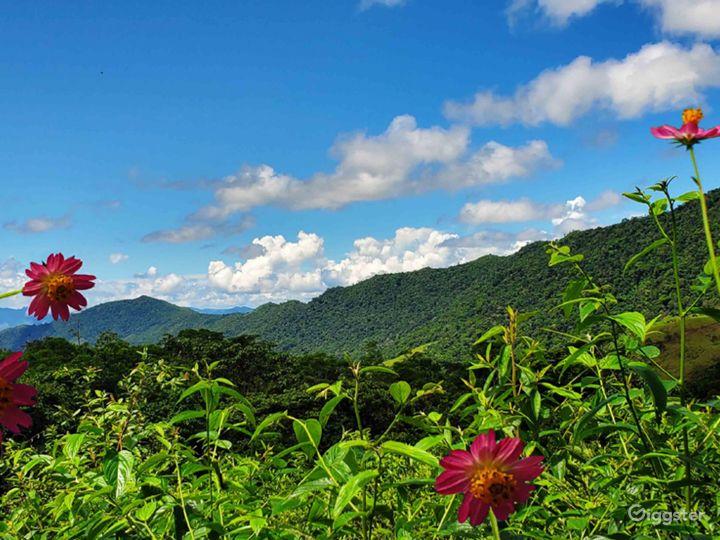 View of the Cordillera Azul.