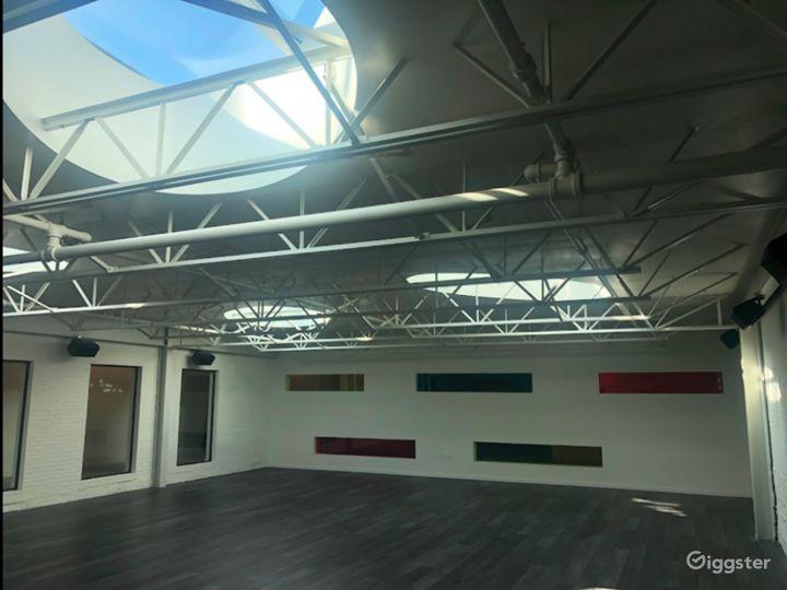 Studio with Oval Skylights in Philadelphia