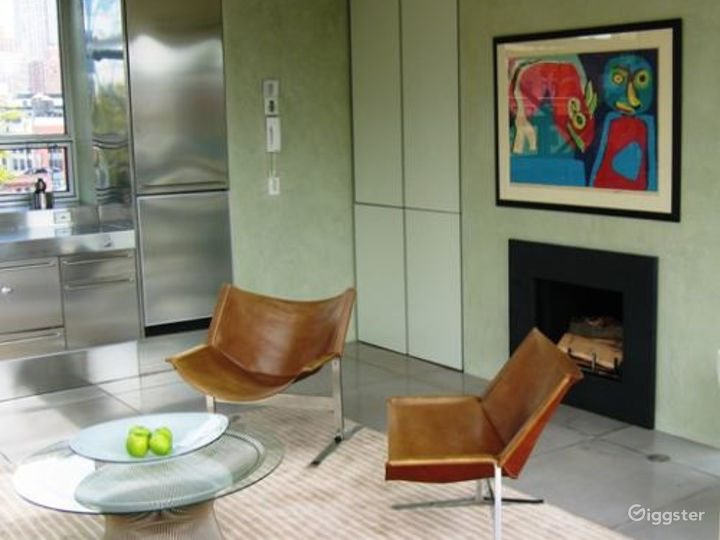 Modern, contemporary penthouse: Location 3327 Photo 4