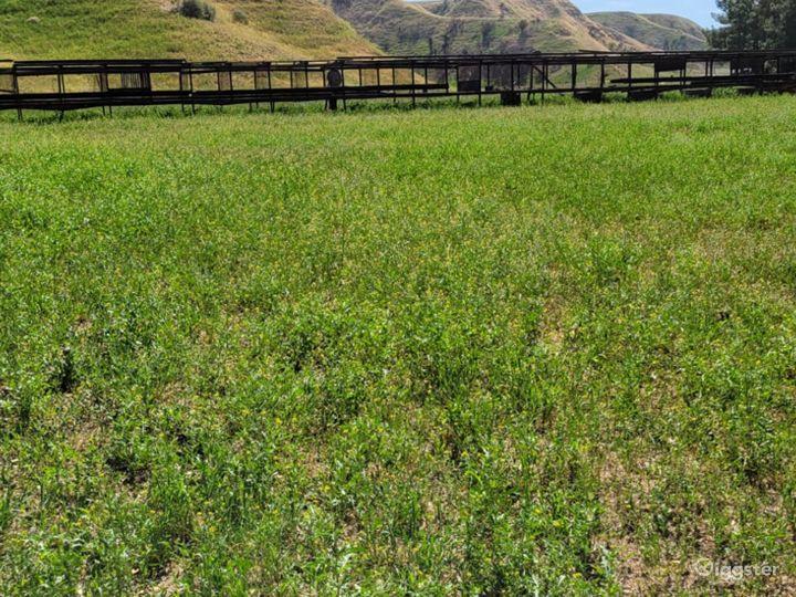 60 acres Cadillac Shack Ranch and Barns Photo 3