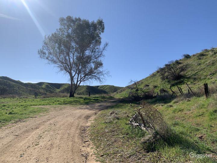 60 acres Cadillac Shack Ranch and Barns Photo 2