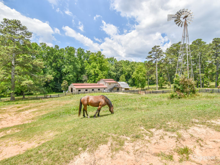 Ultimate Vacation Resort 15 acre Horse Ranch Farm Photo 4