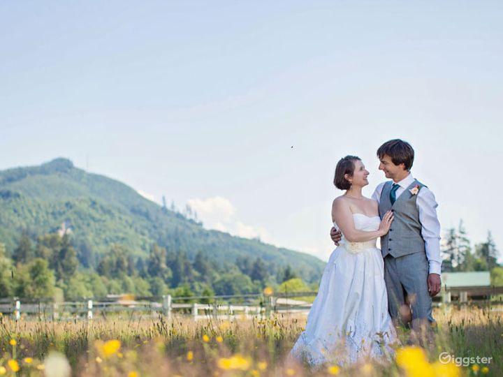 Perfect Setting and Intimate All Events Venue in Ravensdale  Photo 5