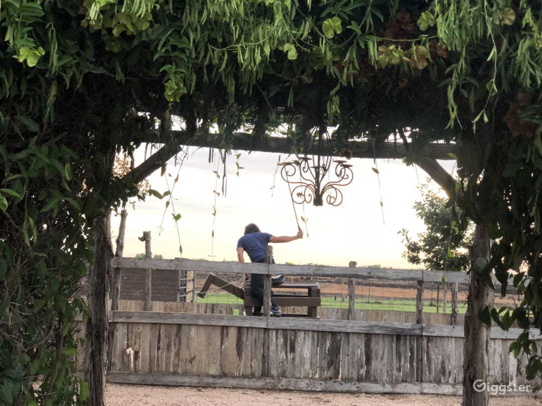 Polo/ equestrian center Photo 5
