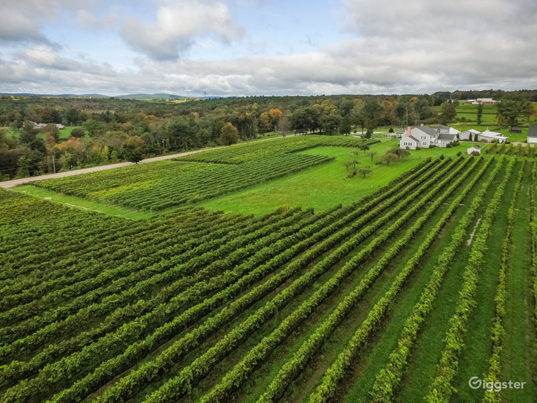 Estate Vineyard Aerial View 40+ Acres