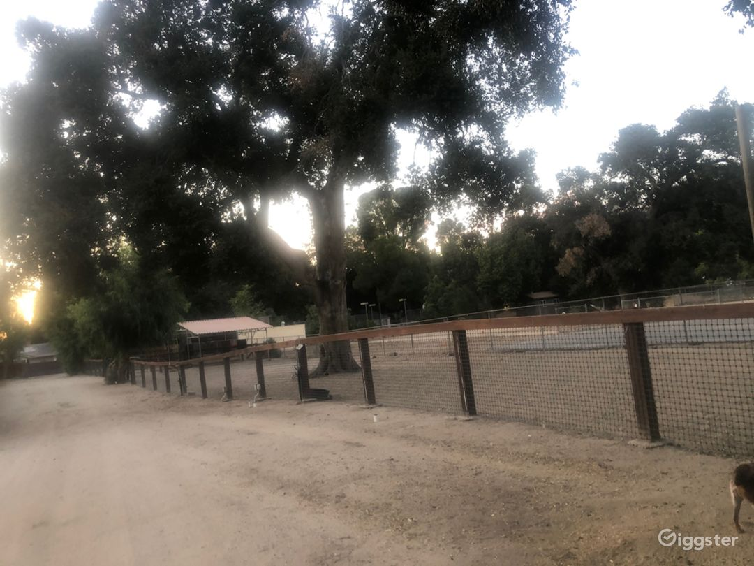 Old Town Newhall Family Ranch  Photo 3