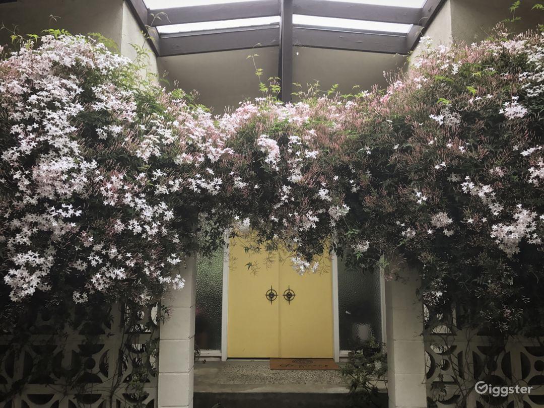 Front door with Jasmine in full bloom...happens twice a year