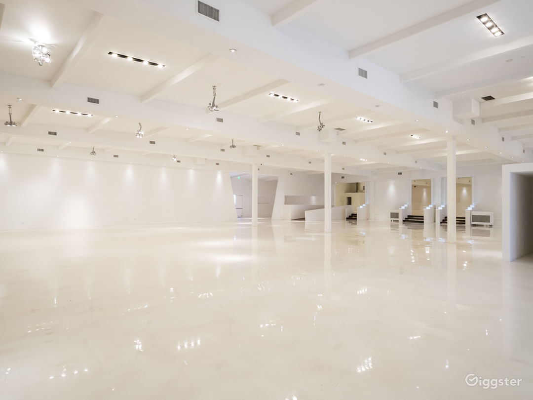 Mega White Warehouse & Office Photo 5