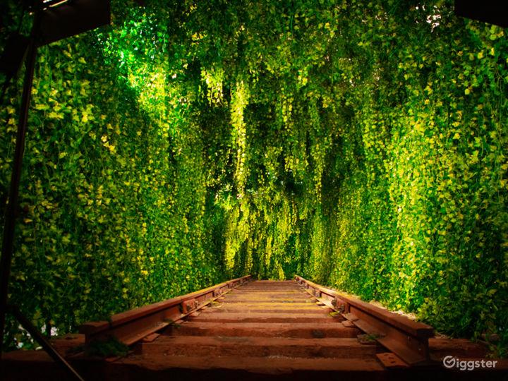 Downtown Green Vine Railroad Tunnel Photo 2
